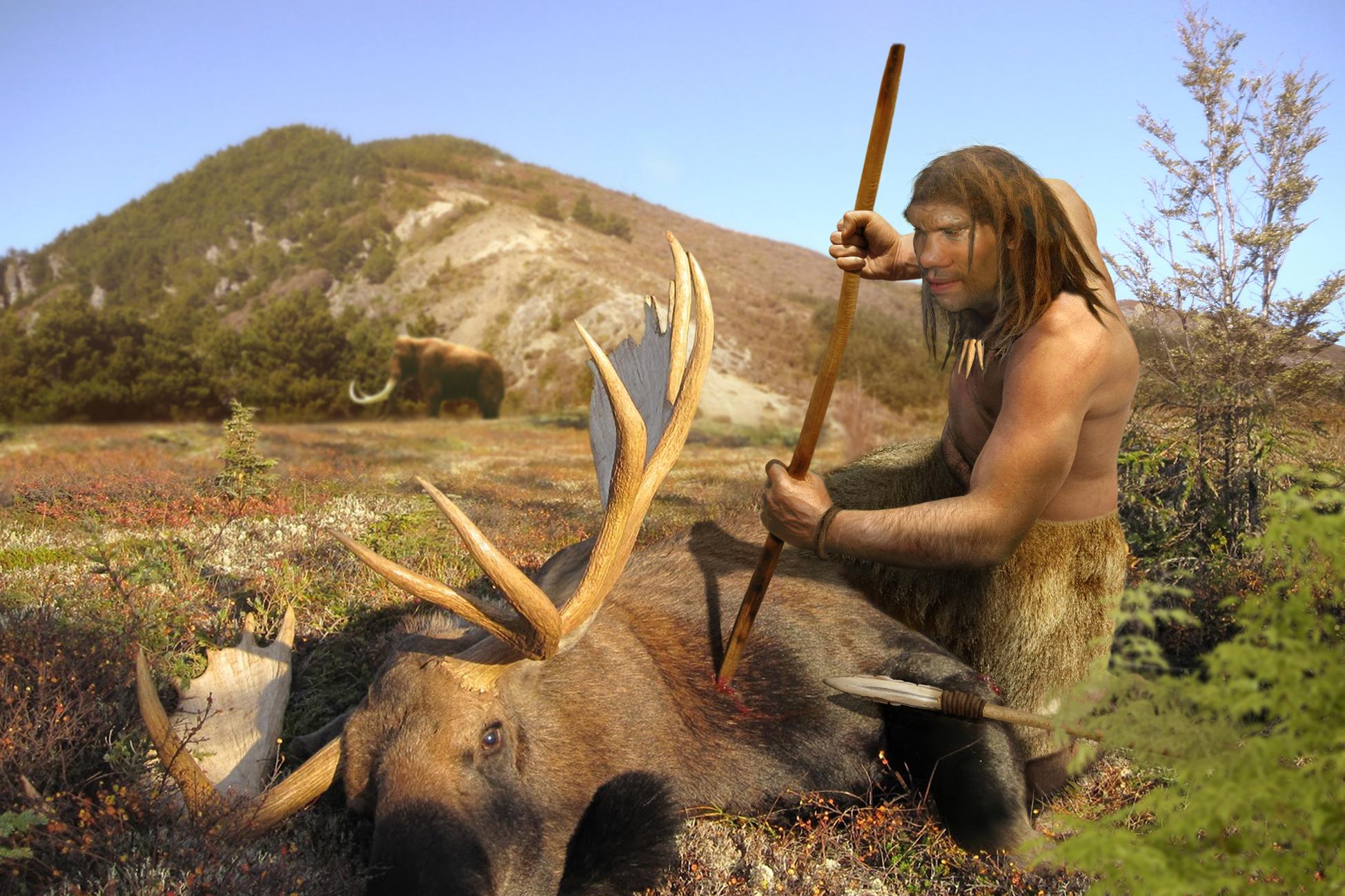 Neanderthal human went extinct  about 28 000 years ago. Image: Roman Uchytel.