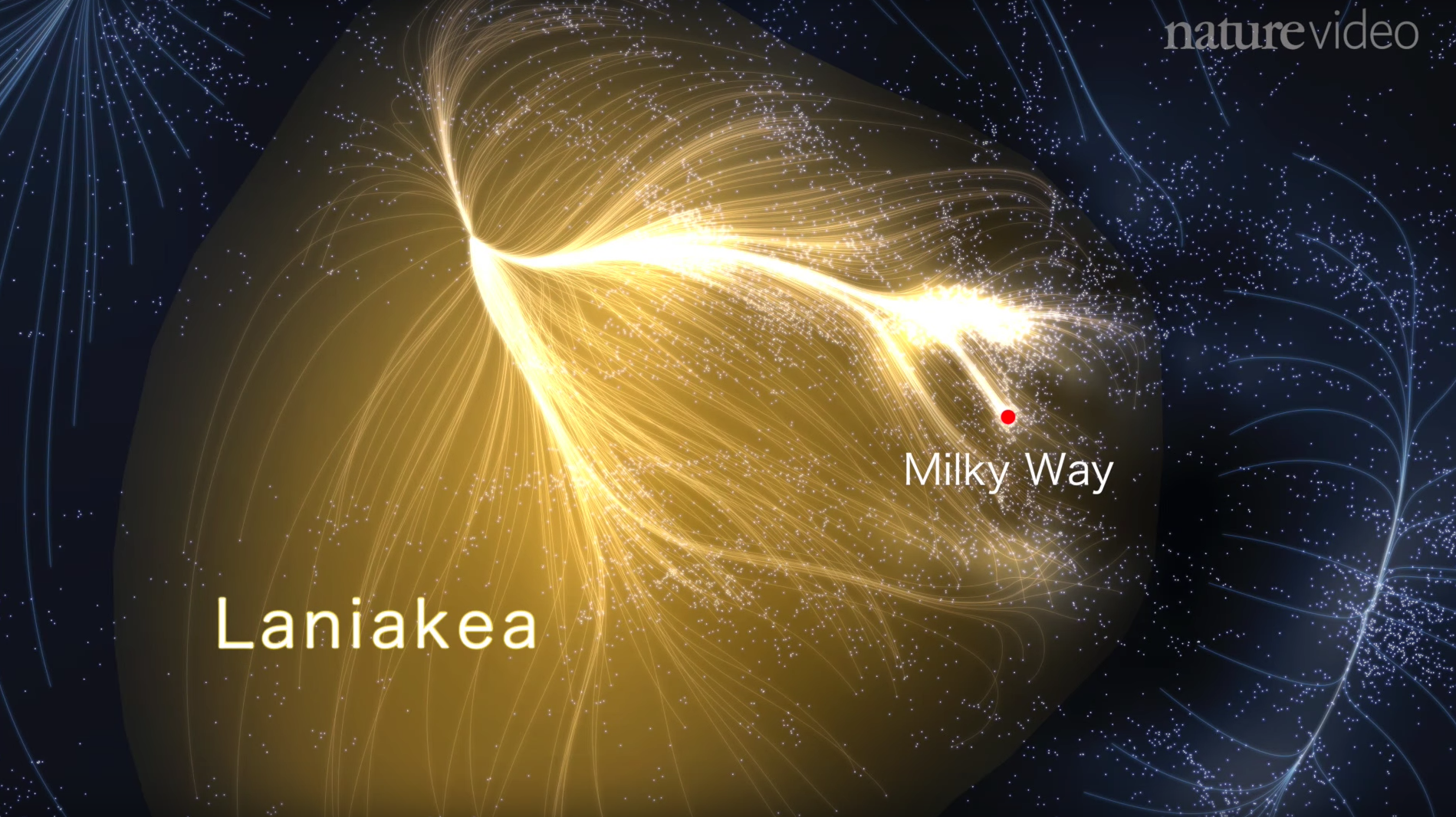 The Milky Way belongs into the Laniakea supercluster. Image: Tully et al, Nature, 2014.