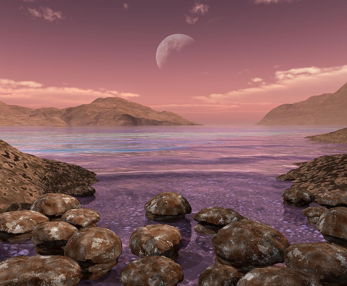 Stromatolites 3.5 billion years ago. Image: Walter Myers.