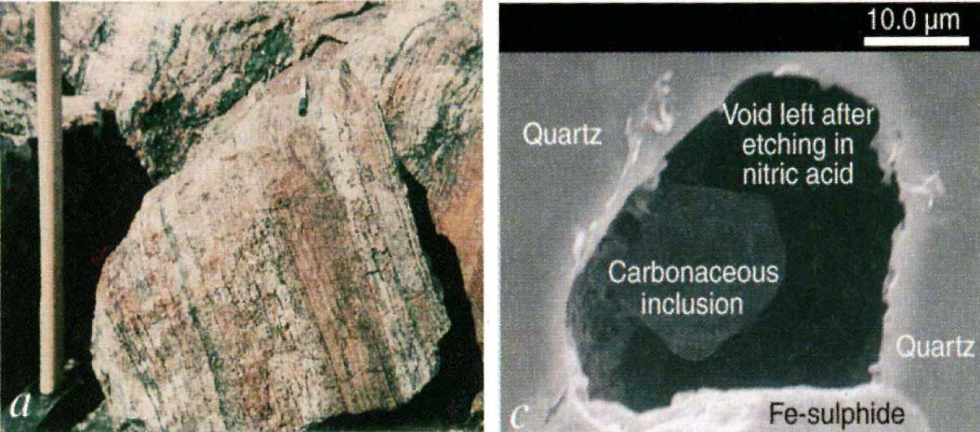 Carbonaceous inclusions from Isua.  The precense of carbon with biological origin has been suggested due to the isotopic ratios. However, this is under dispute. Mojzsis et al, Nature, 1996.