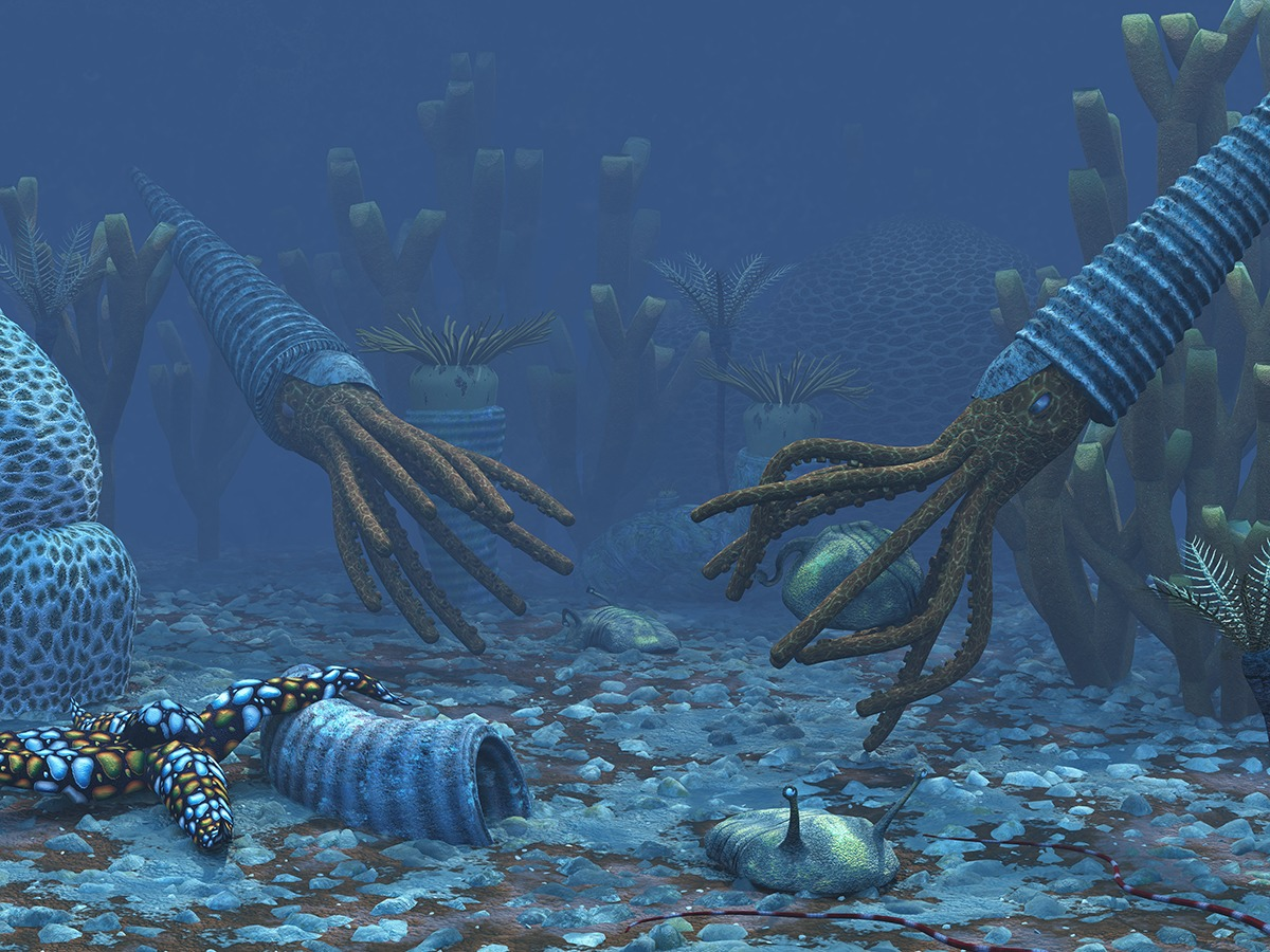 Animal life diversification continued. Here orthoceratites, trilobites and seastars are shown. Image: Walter Myers.